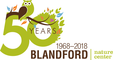 Blandford 50th Logo